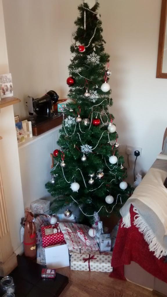The 'Kate Moss' skinny christmas tree